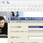 20110213image0