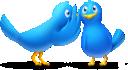 gossip_birds